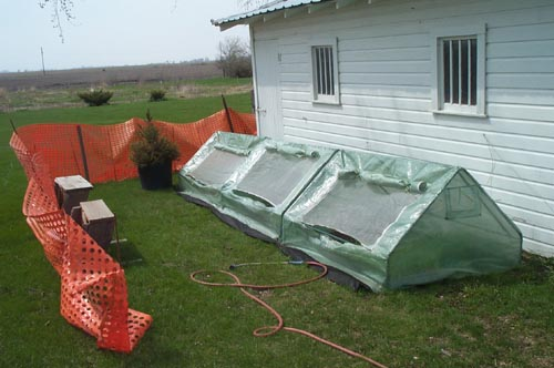 cold frames by the garage with a wind break