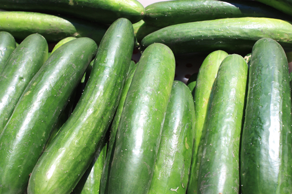 Green finger cucumbers